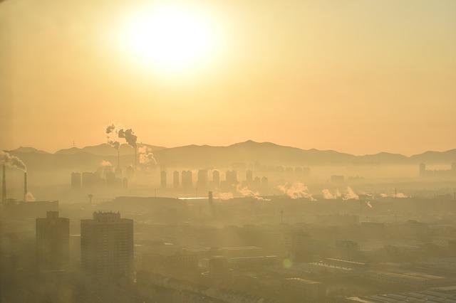 Jak smog wpływa na człowieka?